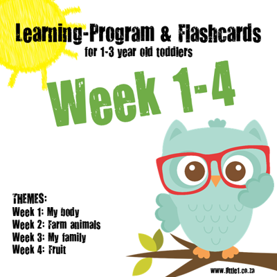 Picture of Learning Program & Flashcards Week 1-4 {TRIAL}